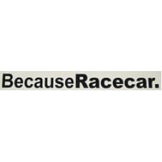 BecauseRacecar v1